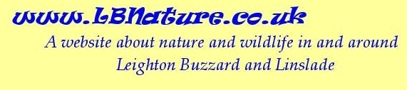LBNature Title Graphic